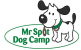 Mr Spot Dog Camp